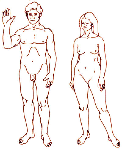 Line drawing of a naked man and woman indicating a complete skin exam areas.